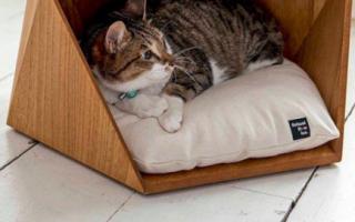 Домик — игровой комплекс для кошки своими руками