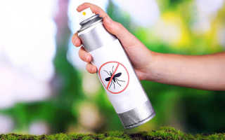 Как сделать отпугиватель комаров своими руками